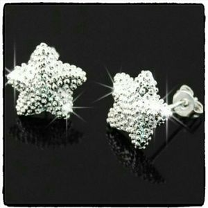 Frosted Star Studded Earrings in Silver  Condition
